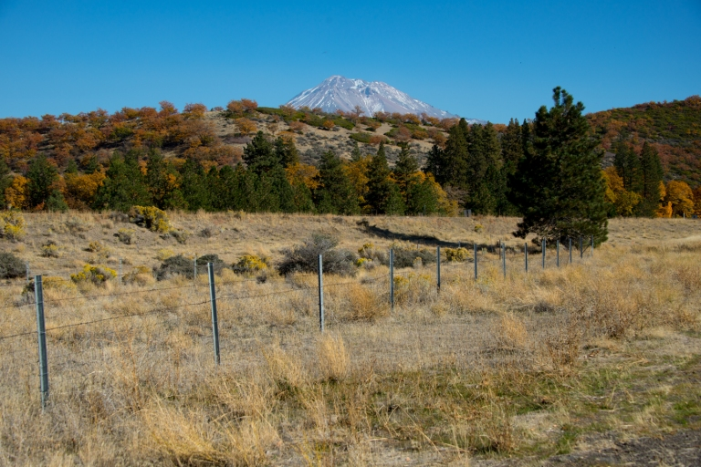 Beautiful fall colors around Mount Shasta