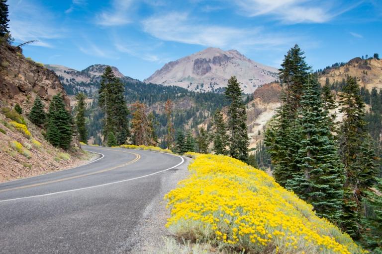 Mt Lassen with wildflowers growing alongside highway 89